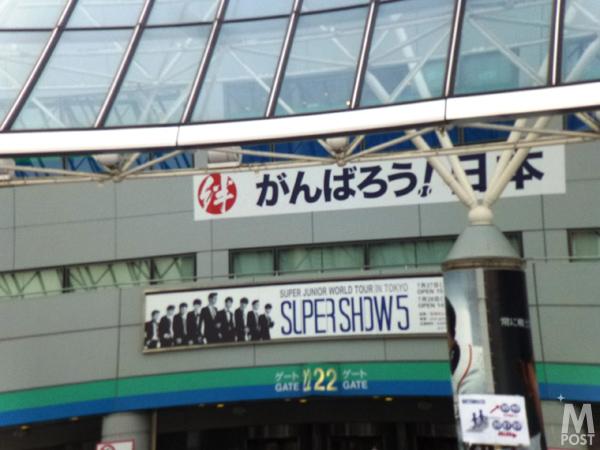 SS52013TD1.jpg